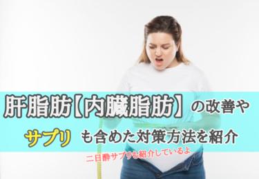 肝脂肪【内臓脂肪】の改善やサプリも含めた対策方法を紹介(二日酔も改善)
